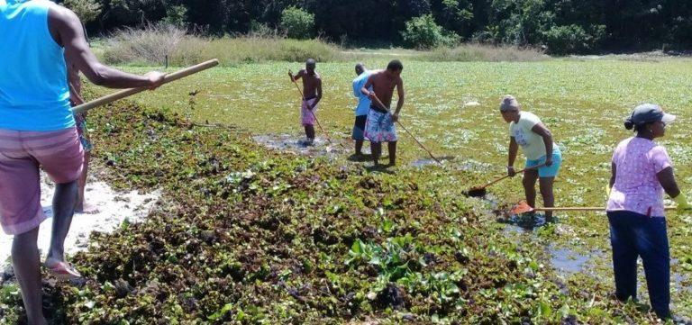 Moradores de Itapuã fazem mutirão de limpeza na lagoa do Abaeté