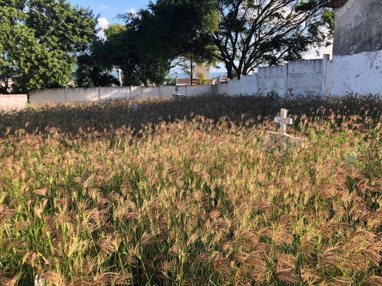 Cemitério de Itapuã segue em condições precárias