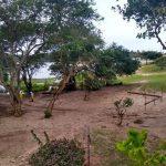 Secretário diz que obra na Lagoa do Abaeté não é 'risco zero' para meio ambiente, mas defende construção de estação: 'Foi examinada'