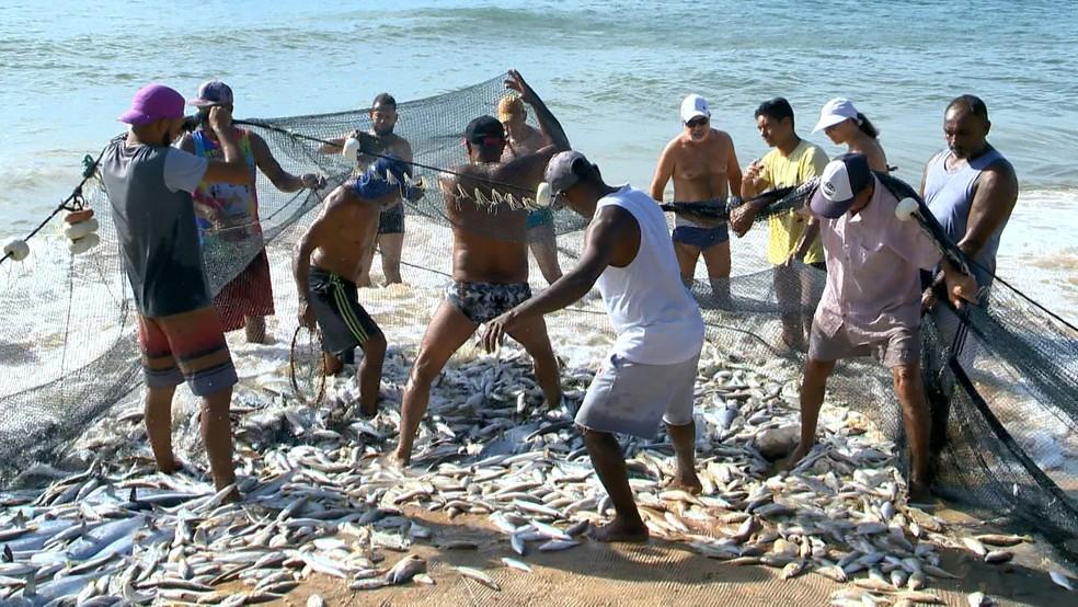 Peixe Pesca